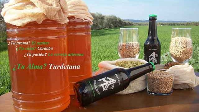 Cerveza Artesana Alma Turdetana