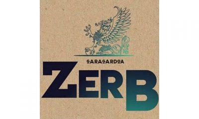 Cerveza Artesana Zerb