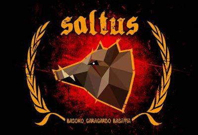 Cerveza Artesana Saltus