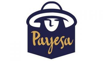 Cerveza Artesana Payesa
